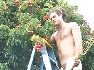 sweet gay stud picking fruits fully exposed