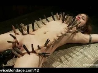 bound zipped girl vagina vibed on wooden box