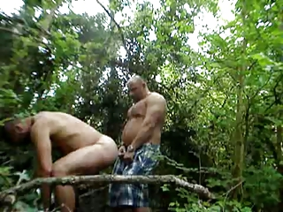 bears inside the woods