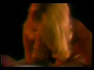 sekas young diary - 1984